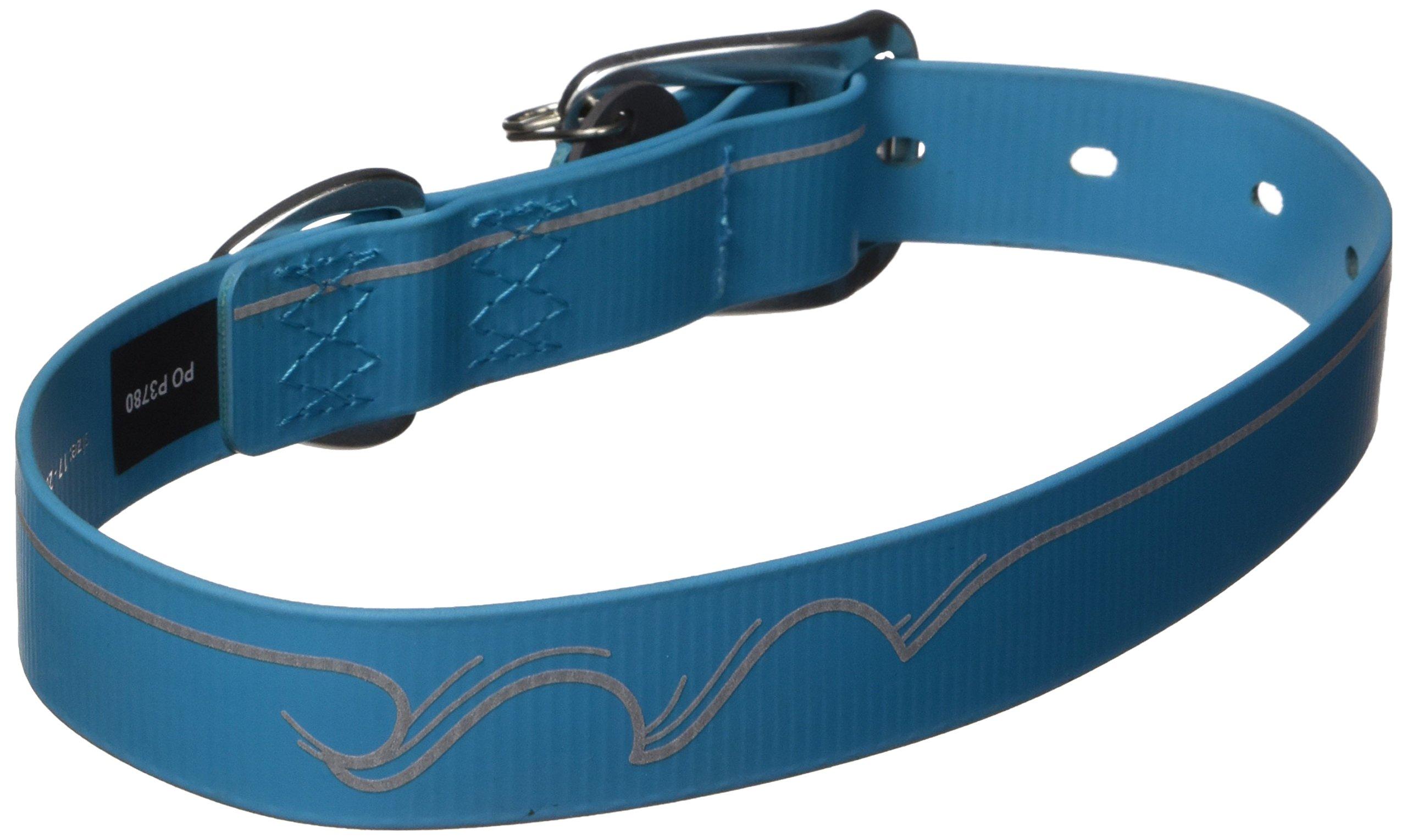 RUFFWEAR - Headwater Waterproof, Stink-Proof, Reflective Dog Collar, Blue Spring, 17''-20''