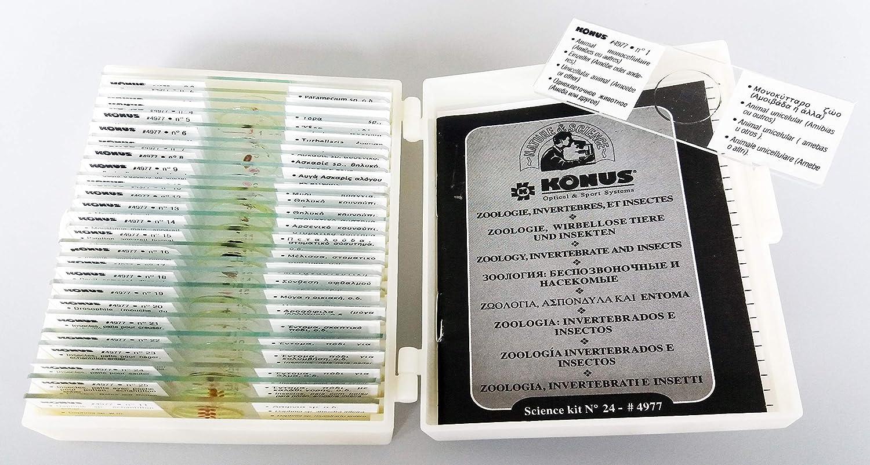 Konus Preparation Set - Biology: Zoology 1 (Pack of 25) USA 4977