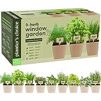 9 Herb Window Garden - Indoor Organic Herb Growing Kit - Kitchen Windowsill Starter Kit - Easily Grow 9 Herbs Plants from Seeds with Comprehensive Guide - Unique Gardening Gifts for Women & Men