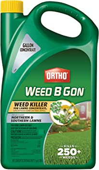 Ortho 0430005 Weed B Gon Concentrate Weed Killer