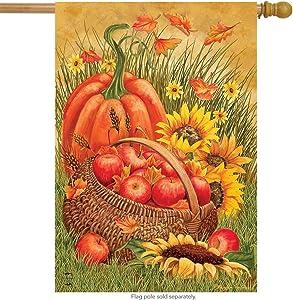 """Briarwood Lane Pumpkin & Apples Autumn House Flag Fall Leaves 28"""" x 40"""""""