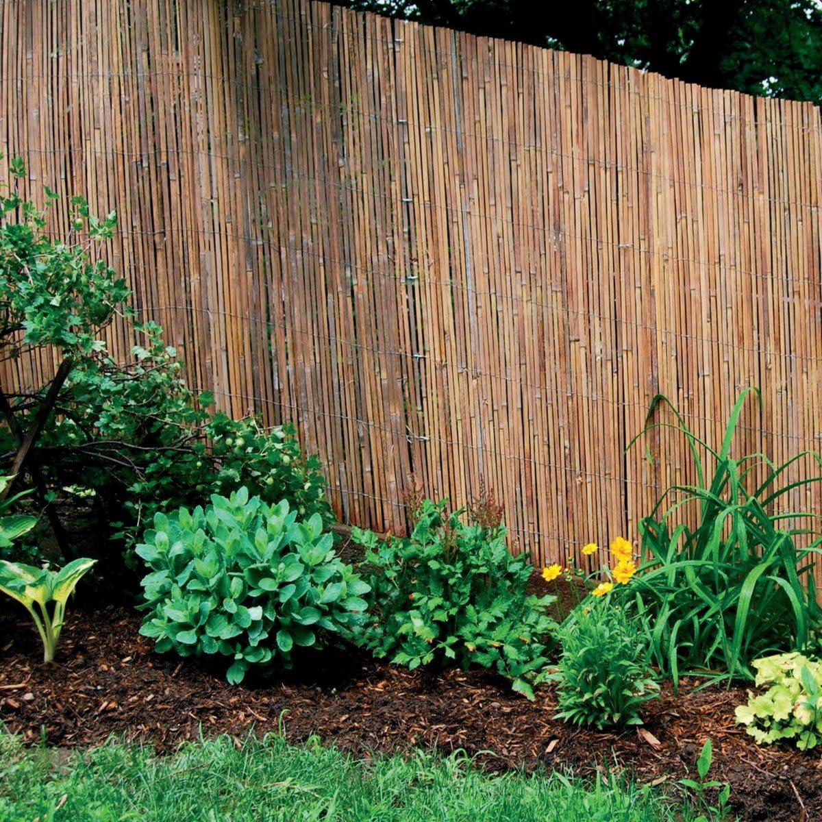 Arella Taim caña Valla coperture separadores ombreggiante Varios Tamaños: Amazon.es: Jardín