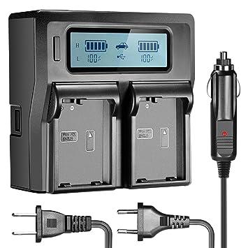 Neewer Doble LCD Cargador Batería para Nikon EN-EL14 Batería Compatible con Nikon D5300 D5100 D3100 D3200 D3300 P7100 P7000 P7700 DSLR Enchufe ...