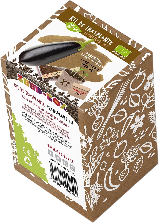 SeedBox KTKPP Huerto Urbano kit trasplante de pipas, para niños ...