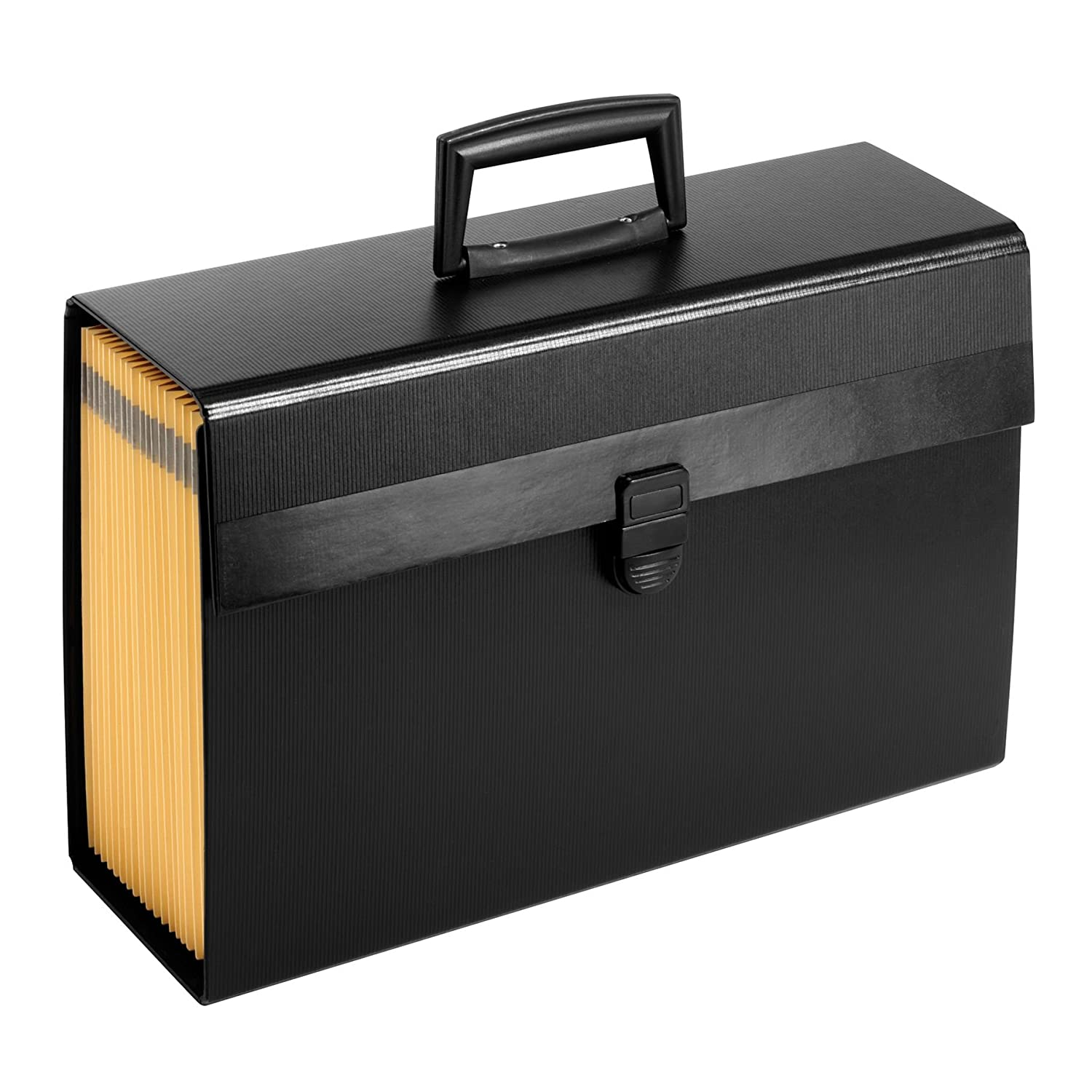Pendaflex Portafile Expanding Organizer, 15 1/8x 10 5/8, Black (01156) 15 1/8x 10 5/8 Esselte Corporation