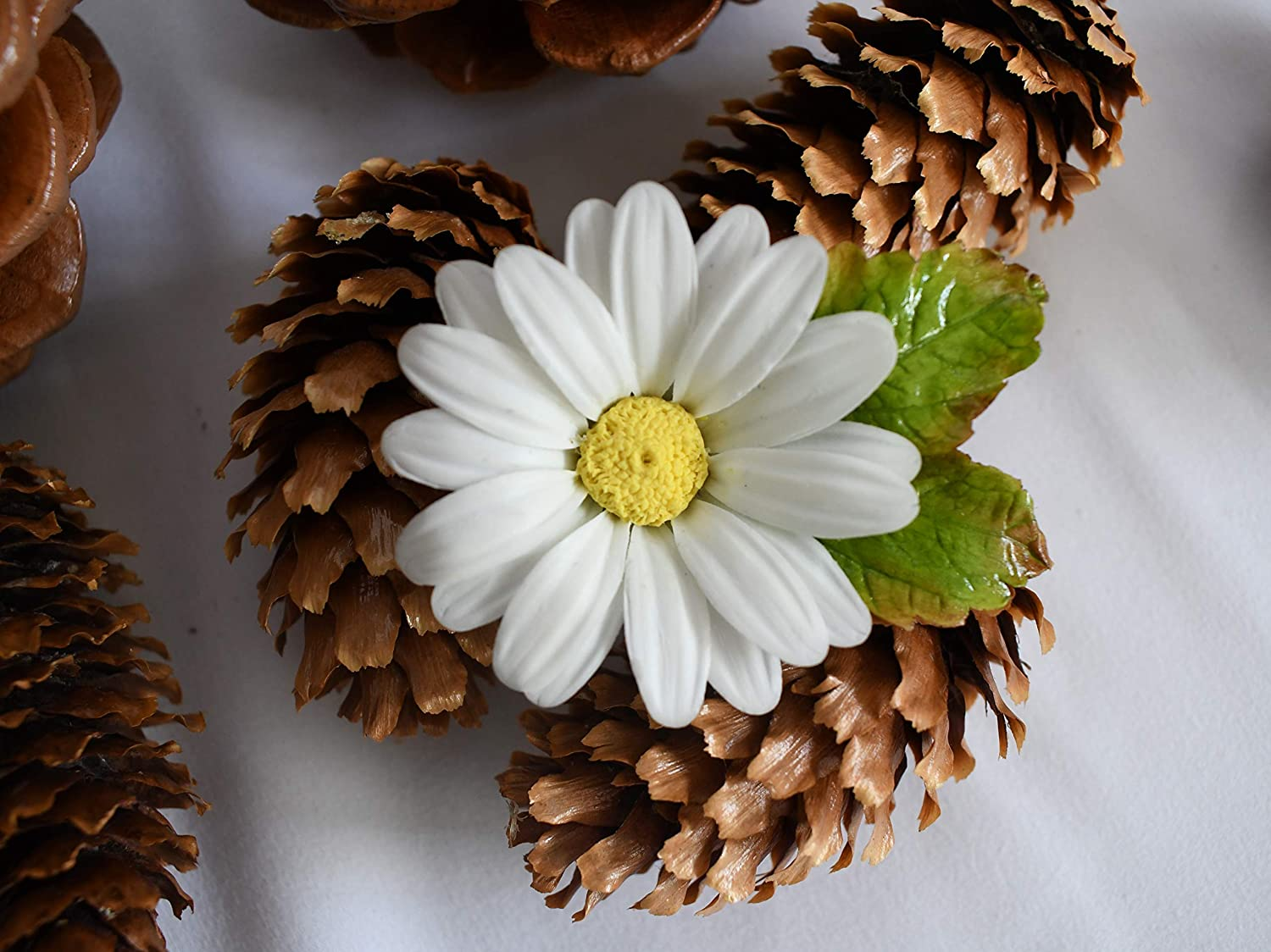 Real Daisy Brooch Botanical Brooch Flower Jewelry Pressed Flower Resin Pin Framed Dried Flowers Framed Dried Flowers