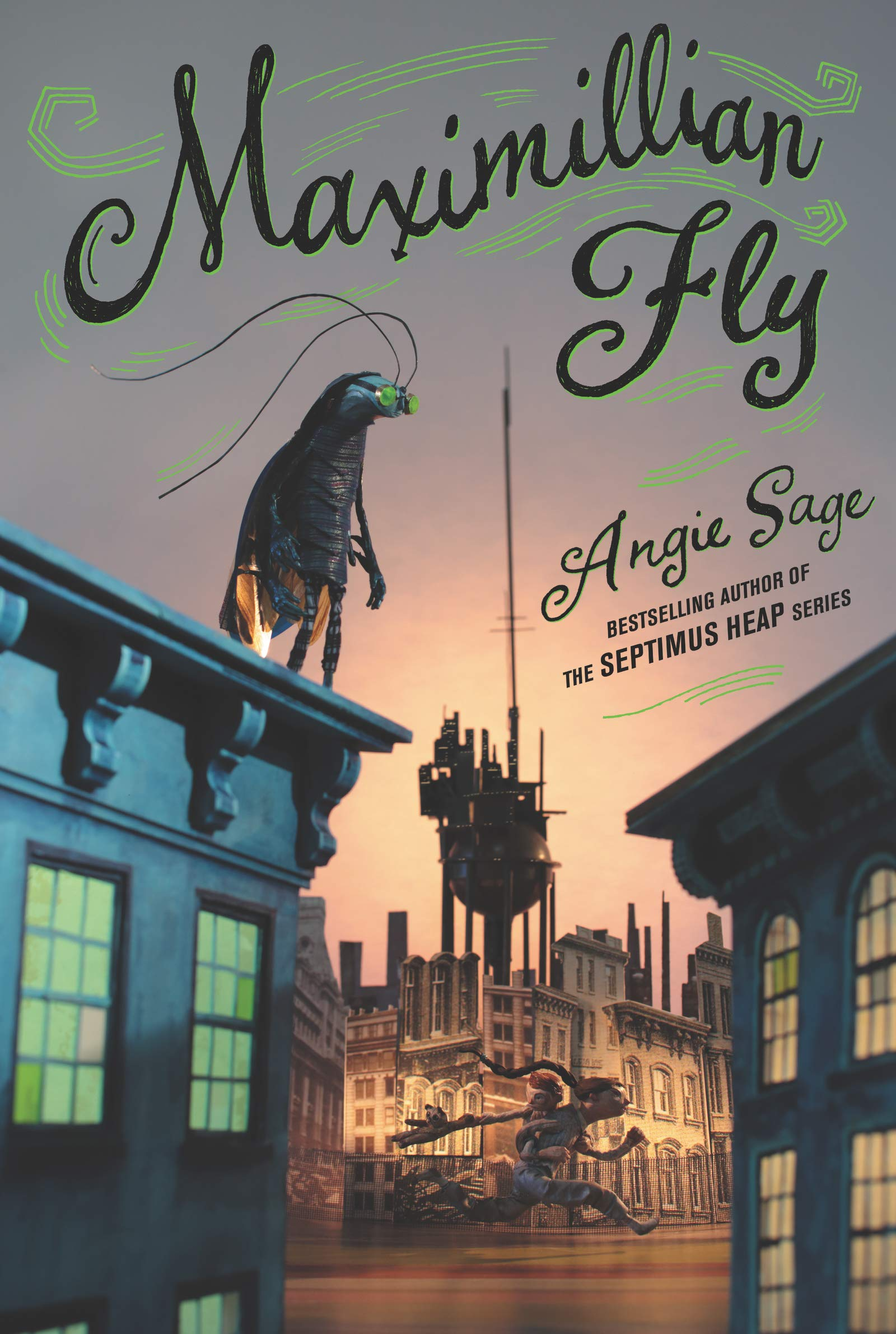 Cover: Angie Sage Maximillian Fly