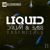 Liquid Drum & Bass Essentials, Vol. 11