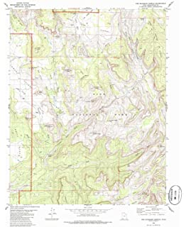 Historical 30 X 60 Minute Bull Shoals Lake AR topo map 24.1 x 44 in Updated 1985 1985 1:100000 Scale