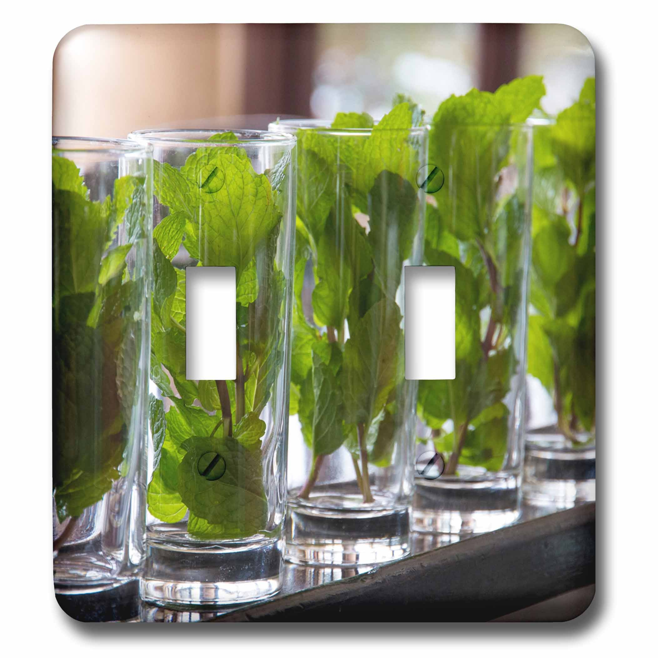 Danita Delimont - Cuba - Caribbean, Cuba, Hotel. Glass filled with mint to make mojitos. - Light Switch Covers - double toggle switch (lsp_226539_2)
