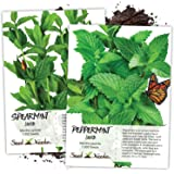 Seed Needs, Non-GMO Mint Garden Seeds for Planting (Includes 2,000 Seeds Collectively) Spearmint & Peppermint