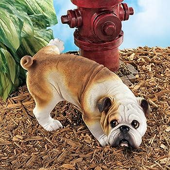 peeing bulldog garden statue