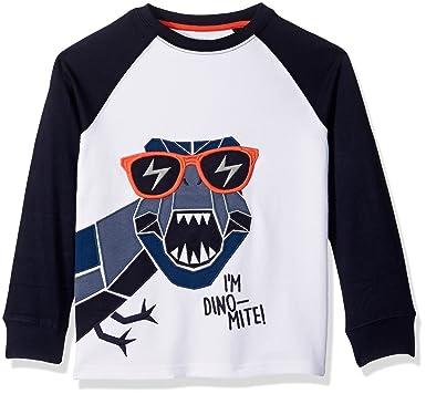 cdf1bd102d Amazon.com: Gymboree Boys' Dinomite Graphic Tee: Clothing