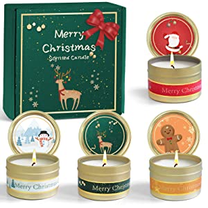 FIRIK Christmas Scented Candles for Home Natural Soy Wax Aromatherapy Candles Portable Travel Tin 2.5 Oz Candles,Aromatic Candles Gift Apple & Cinnamon,Gingerbread,Noble Wine,Winter Cedarwood