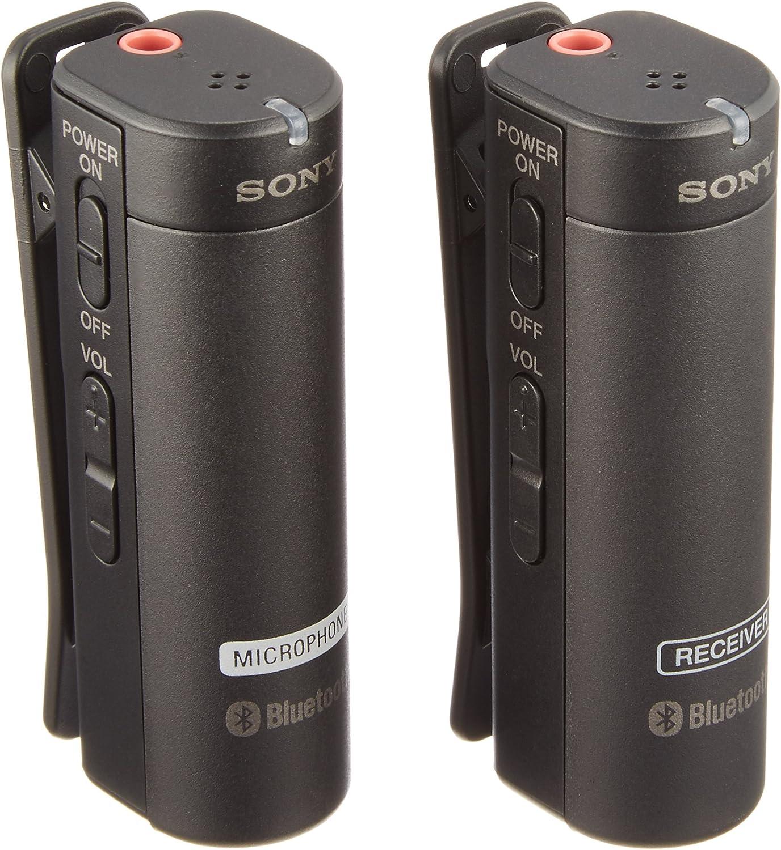 Sony micrófono inalámbrico ECM-C AW4