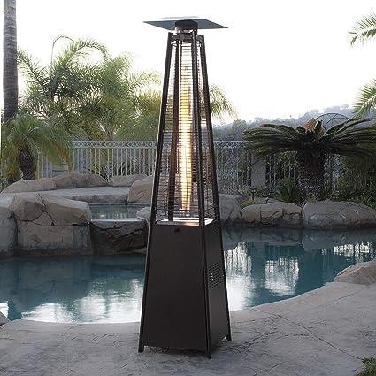 Amazon Com Fossexpress 42000 Btu Garden Radiance Dancing Flames