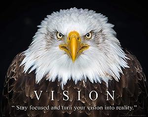 Apple Creek Bald Eagle Wildlife Motivational Poster Art Print 11x14 Vision School Classroom Wall Decor Pictures