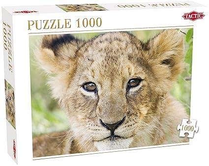Tactic Lion 1000pieza(s) - Rompecabezas (Jigsaw Puzzle, Fauna, Li ...