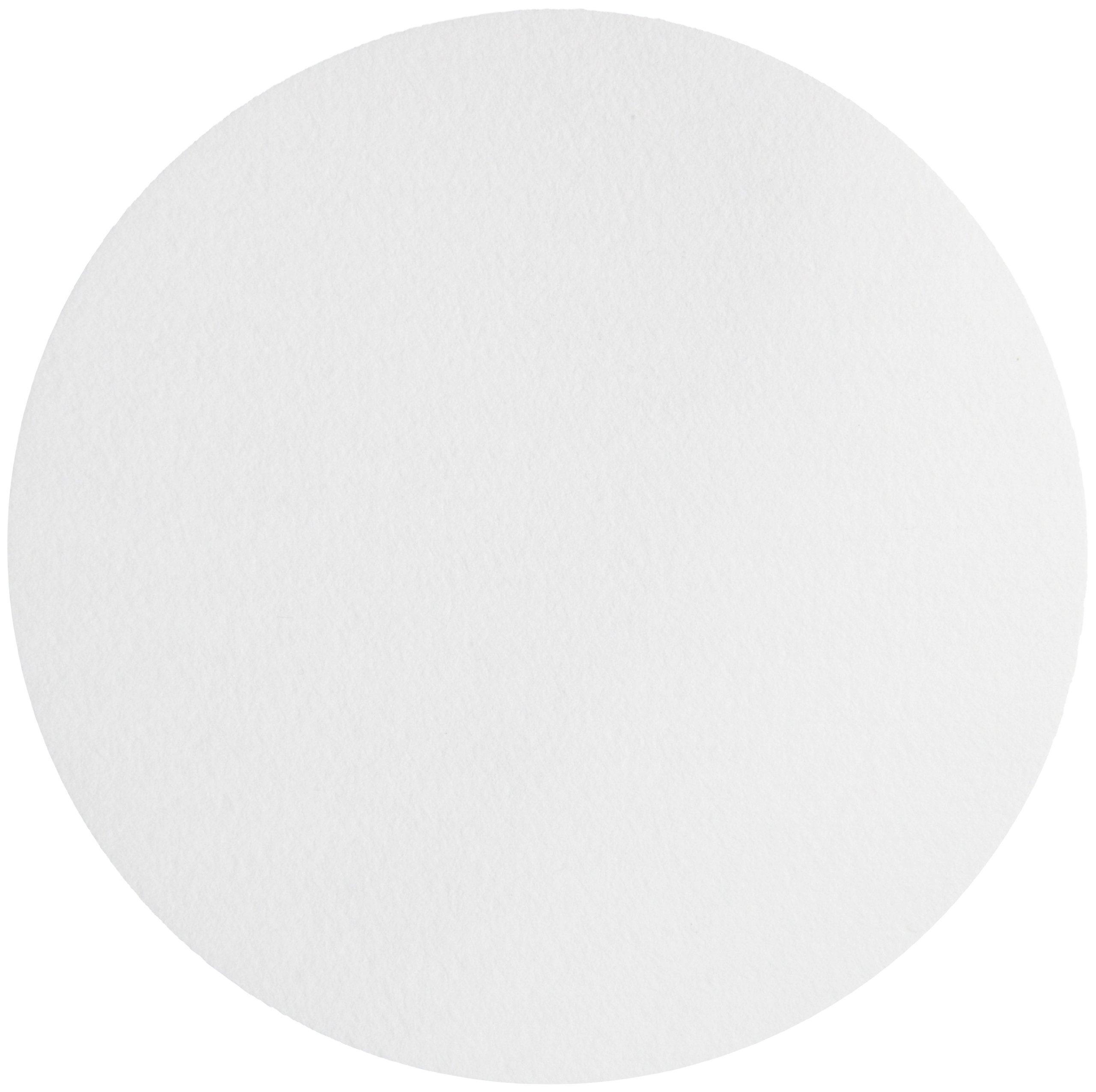 Whatman 1004-240 Quantitative Filter Paper Circles, 20-25 Micron, 3.7 s/100mL/sq inch Flow Rate, Grade 4, 240mm Diameter (Pack of 100)