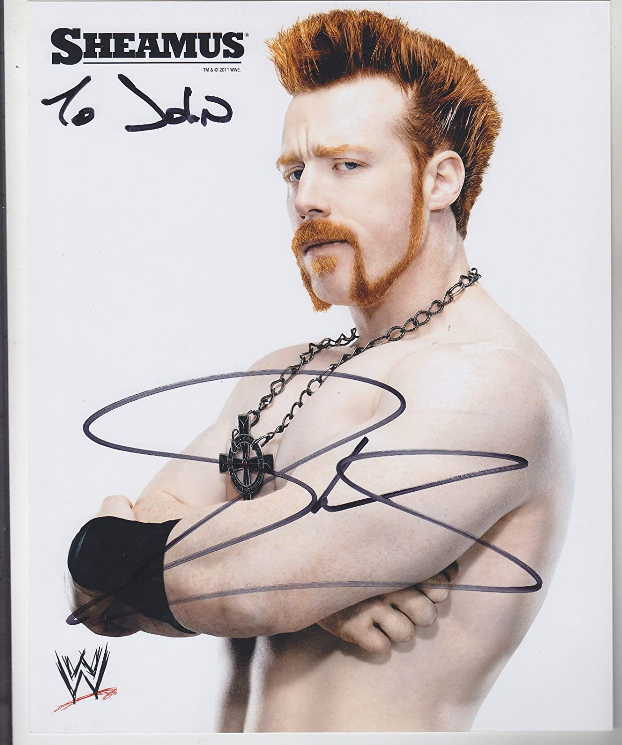 Sheamus Signed 8 X 10 Color Glossy Photo Wrestling Wwe Wwf