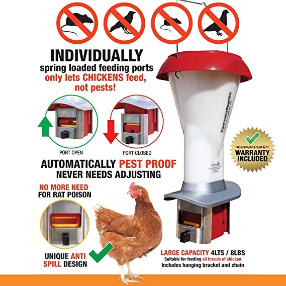 feeder hanging galvanised proof mice rodent and the chicken poultry rodents asp rats guide