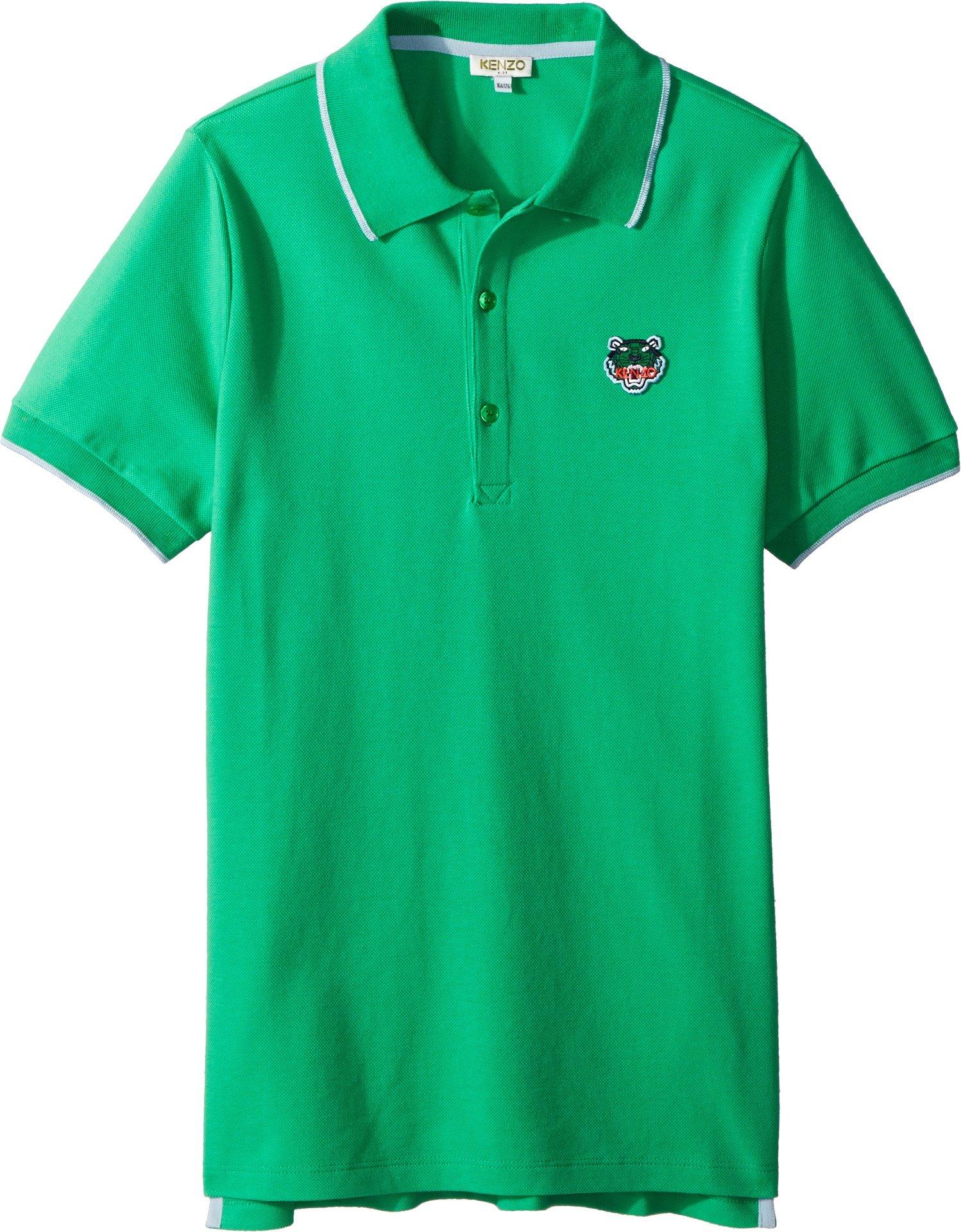Kenzo Kids Boy's Polo Tiger Logo (Big Kids) Green 16 A
