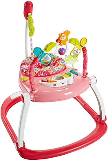 05ce1738caf3 Amazon.com   Fisher-Price Floral Confetti SpaceSaver Jumperoo   Baby