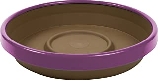 """product image for Bloem Terra Two-Tone Saucer, 8"""", Chocolate w/Passion Fruit (STT0845-29)"""