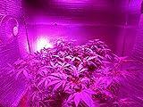 TORCHSTAR 14W BR40, LED Grow Light Bulb Grow Plant