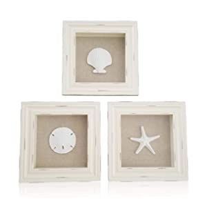 "Tumbler Home Beachy Set of 3 Shell Shabby Chic Shadow Boxes- Off White Frame 7"" x 7"" - Starfish, Sand Dollar and Clam Shell Mounted on Fabric Background"