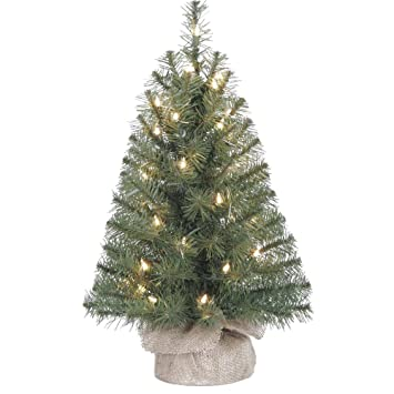 Image Unavailable. Image not available for. Color: Eclectic Blackbird Small  Artificial Christmas Tree ... - Amazon.com: Eclectic Blackbird Small Artificial Christmas Tree Pre