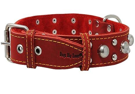 leather stud dog collars