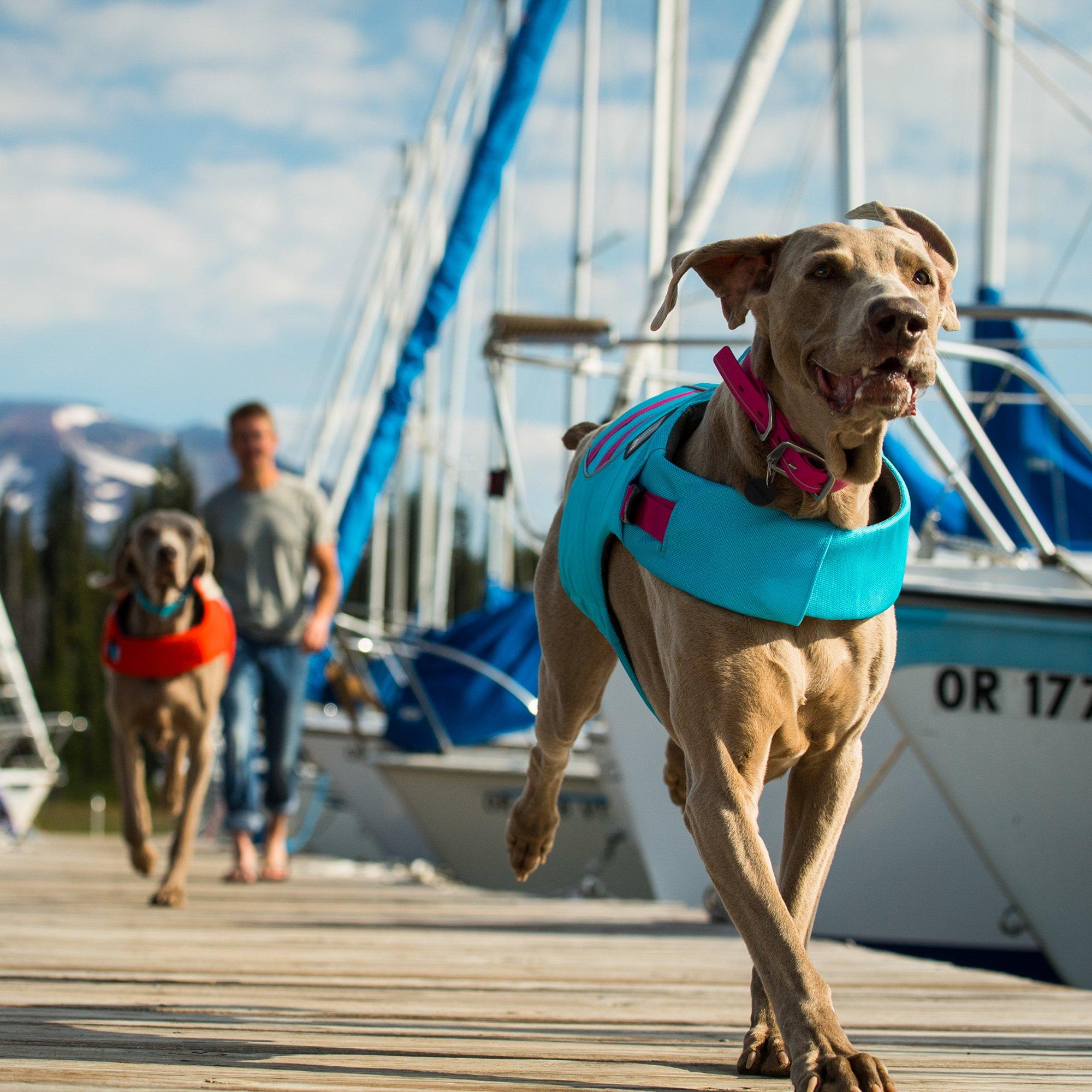RUFFWEAR - Float Coat Reflective Life Jacket for Dogs, Blue Atoll, Large by RUFFWEAR (Image #8)