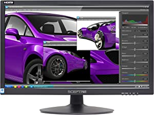 Sceptre 22-Inch 75Hz 1080p LED Monitor HDMI VGA Build-in Speakers, Brushed Black 2019 (E225W-19203S),Metal Black