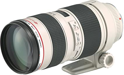 Buy Canon EF 70 200mm F 28L USM Telephoto Zoom Lens For DSLR