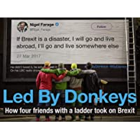 Led by Donkeys: How four friends with a ladder took on Brexit
