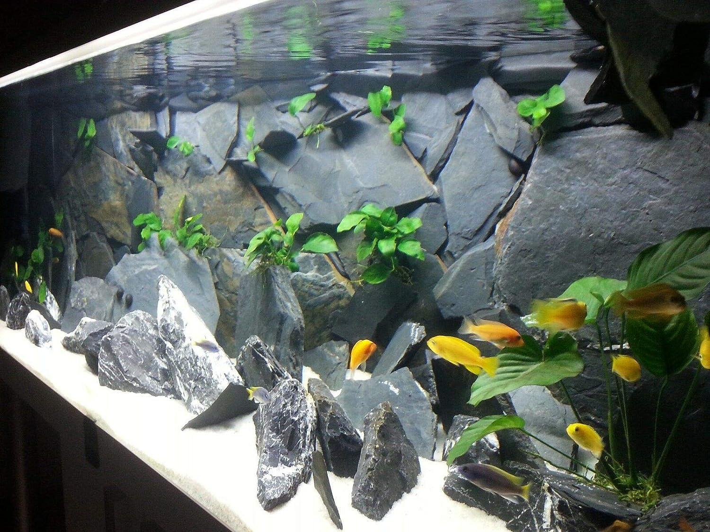 1kg, Wood Stone TM Aquatix Aquarium Stone Slate Fish Tank Premium Decoration 100/% Natural Ideal For Caves White Black Raibow