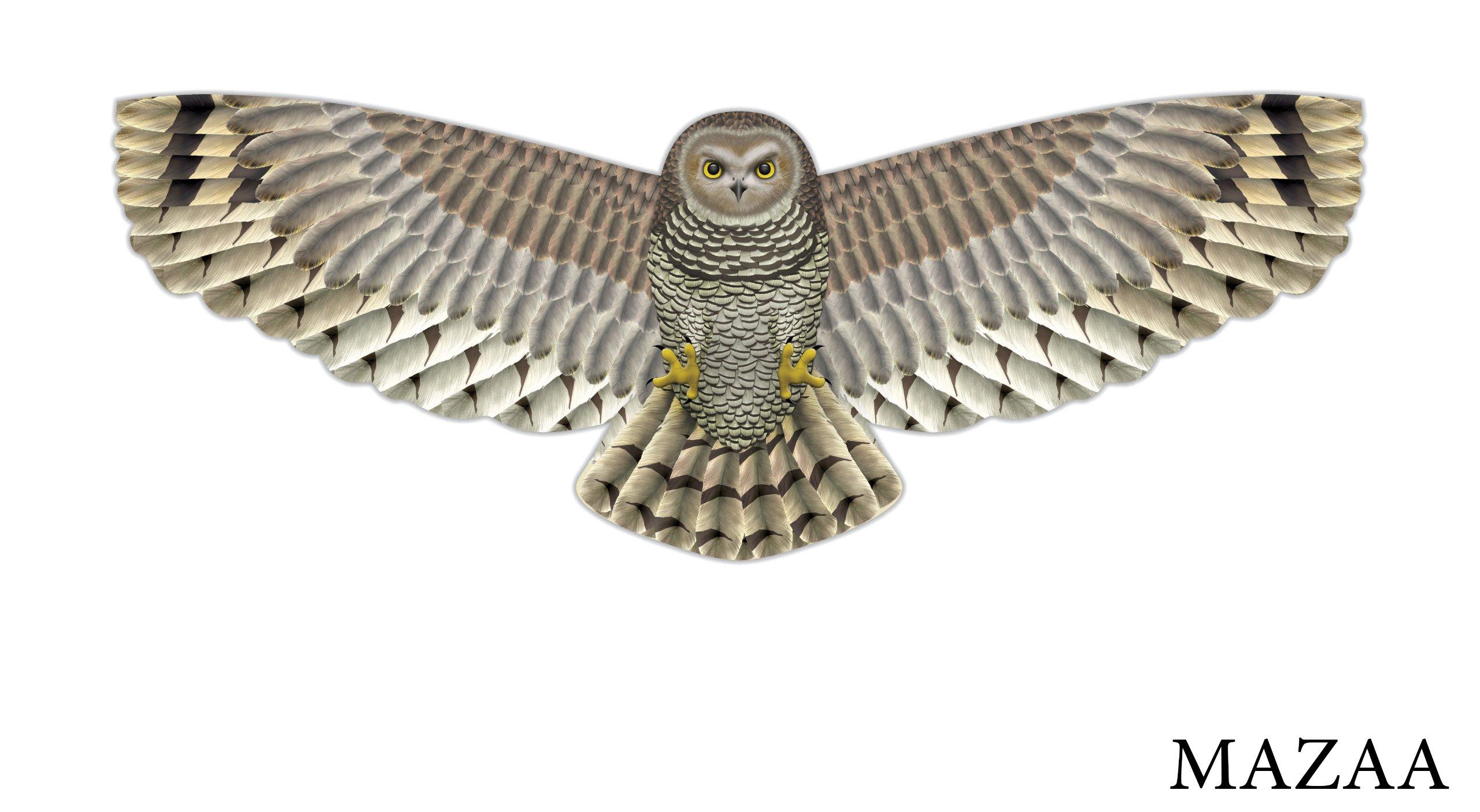 X-Kites Birds of Prey Kite 48''- Owl by X-Kites