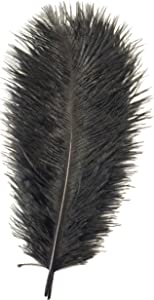 Happy Feather 8-10 inch Black Ostrich Feather Crafts for Wedding Party Centerpiece Home Decoration Pack of 10-Black