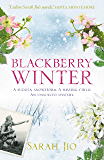 Blackberry Winter: The most haunting and gripping novel about motherhood, a missing child and a centuries old mystery