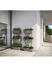 Vasi Pensili Giardino E Giardinaggio Amazon It