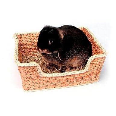 Rosewood Cama para animales pequeñ romper el aburrimiento: Amazon.es: Productos para mascotas