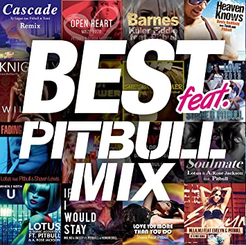 Amazon best feat pitbull mix va pitbull mix voltagebd Choice Image