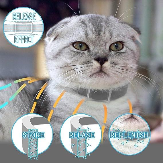 MagicHome Collar Antiparasitario para Gatos contra Pulgas, Garrapatas y Mosquitos: Amazon.es: Bricolaje y herramientas
