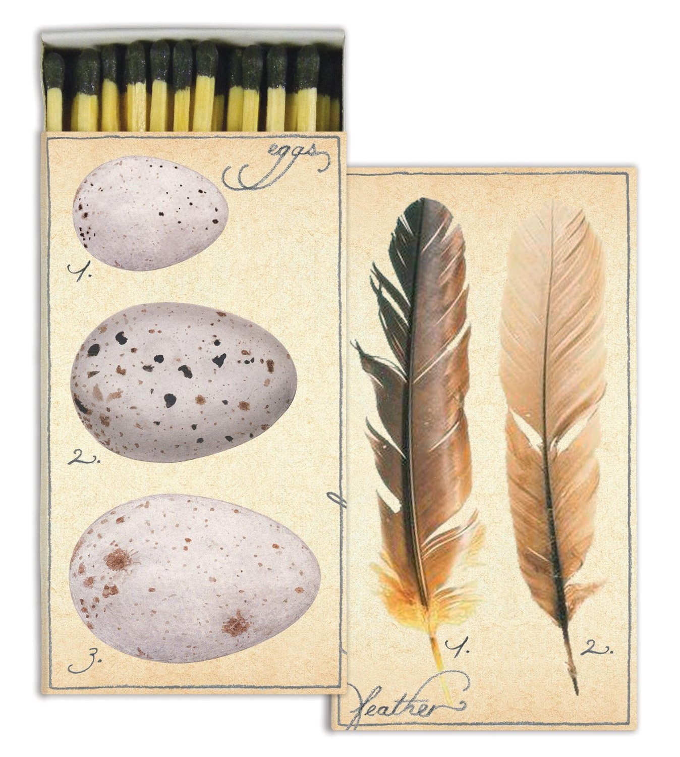 Matches - Fine Feathers (Set of 12)