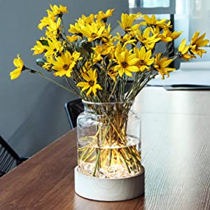 Table Glass Vase with LED Lights, Flower Clear Vase with Timing Function, Battery Operated Centerpieces Vase with Wood Tray for Home Decor/Indoor Green Plants/Fish Tank/Wedding/Party etc(Clear)