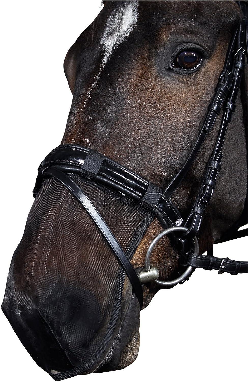 Medidor para caballos Reitsport Amesbichler hasta 100 cm, con nivel de burbuja, aluminio