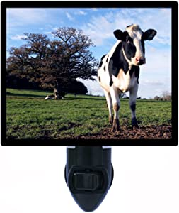 Cow Night Light, Milk Farm, Curious Cow, Animals