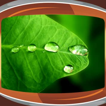 Amazon Raindrops Live Wallpapers Appstore For Android