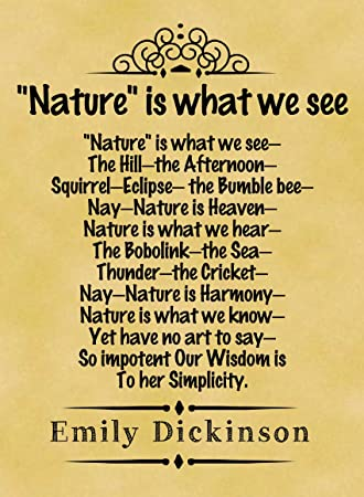 nature is what we see